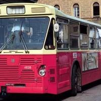 Il bus 37, adibito subito dopo la strage a mezzo per il trasporto delle salme delle vittime (Associazione tra i familiari delle vittime della strage della stazione di Bologna)